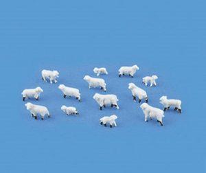 n gauge sheep